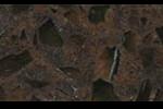 blaty kuchenne Silestone Marron-Jupiter-Coffee-Brown_1